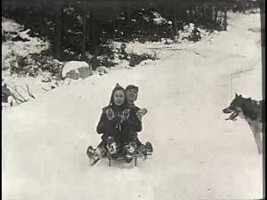 sleddingfun
